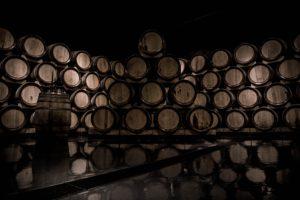 Tag des offenen Weinkellers @ Saale-Unstrut
